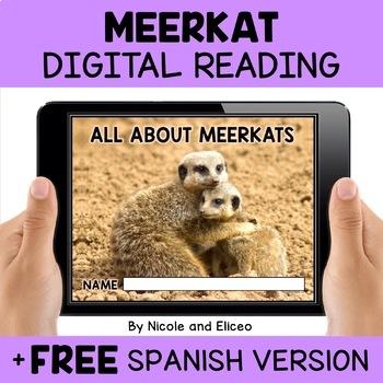 Meerkat Reading Comprehension For Google Classroom