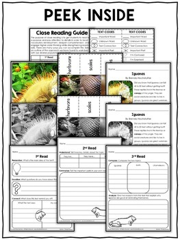 Close Reading Passage - Iguana Activities