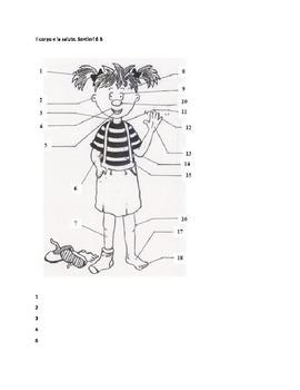 Il Corpo e la salute: crossword puzzle and wordsearch