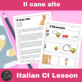 Il cane alto - a Comprehensible Input lesson for Italian learners