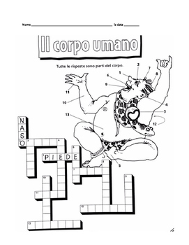 Il corpo umano crossword