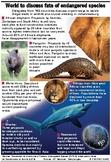 Illegal trade in wildlife parts - Endangered species