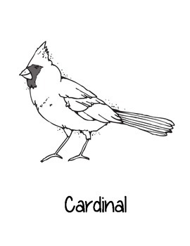 Illinois State Coloring Pages