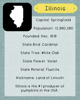 Illinois State Facts and Symbols Class Decor, Government,