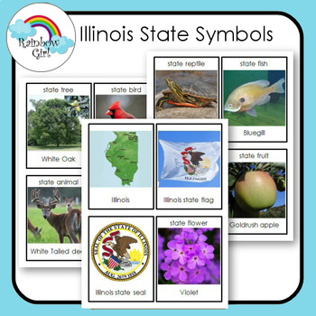 Illinois State Symbols Cards