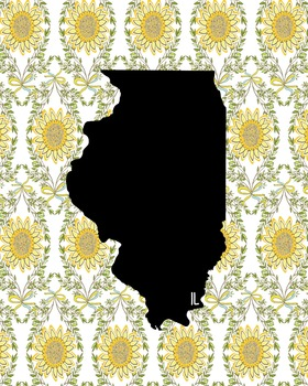 Illinois Vintage State Map or Poster Class Decor, Classroom Decoration