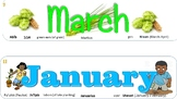 Illustrated Months of the Year