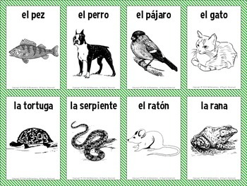 spanish animals vocabulary flashcards by mr elementary tpt. Black Bedroom Furniture Sets. Home Design Ideas