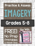 Imagery Practice & Assess FREE! Includes Worksheet + Test