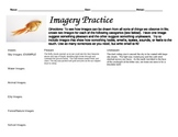 Imagery Practice Graphic Organizer