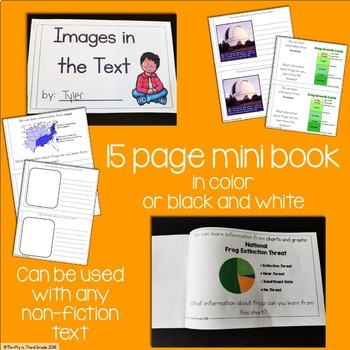 Images in a Text Interactive Mini Book {RI.3.7}