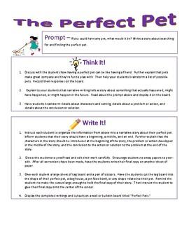 Imaginative Narrative Writing - The Perfect Pet