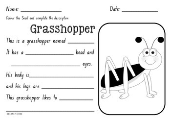 Imaginative Writing: Descriptions- INSECTS