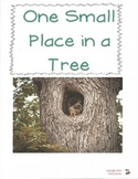 One Small Place in a Tree:  Imagine It Grade 3