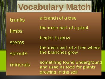 Imagine It Reading Grade 2 Unit 2 Lesson 5 Tell Me Tree Powerpoint