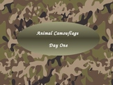 Imagine It Reading Grade 2 Unit 4 Lesson 1 Animal Camouflage Powerpoint