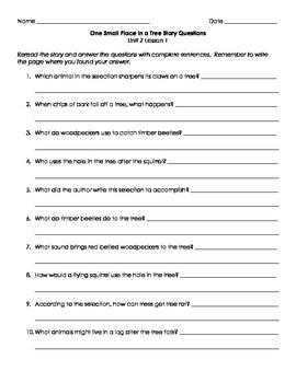 Imagine It! Third Grade Unit 2 Story Questions