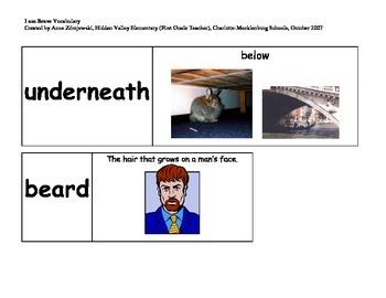 Imagine It Unit 10 Vocabulary Picture Cards--I am Brave