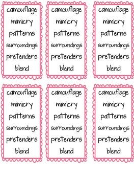 Imagine It Unit 4 Vocabulary Cards