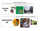 Imagine It Units 1-10 Vocabulary Picture Cards Bundle