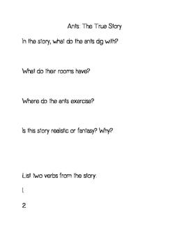 ImagineIt! Decodable Questions Bundle