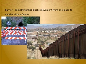 Immigration and Refugee Powerpoint