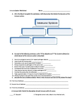 Immune System Adaptive and Innate Worksheet with Key