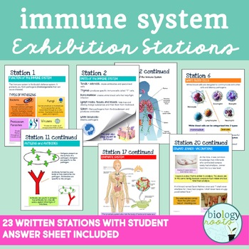 Immune System Exhibition Stations