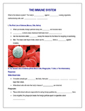 Immune System Intro Notes-Shell