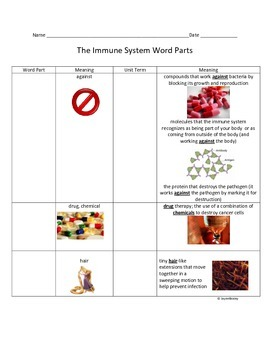 Immune System Root Word Parts