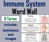 Immune System Word Wall Cards