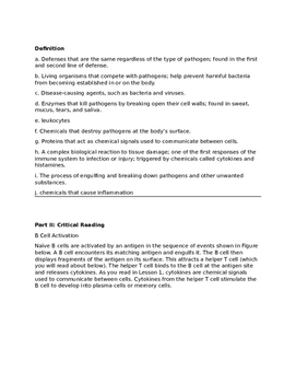 Immune System Worksheet