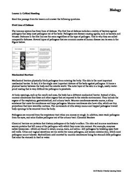 Immune System and Disease Worksheet