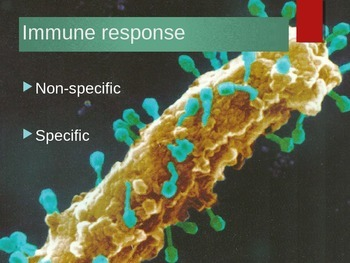 Immunity Powerpoint with beautiful pictures and clear animations