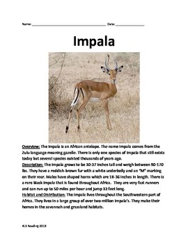 Impala - Informational Article Facts - Review Questions Vo