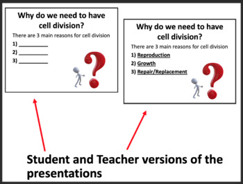 Importance of Cell Division - Biology PowerPoint Lesson and Notes Package