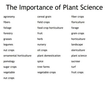 Importance of Plant Science Bingo for an Agriculture II Plant Science Course