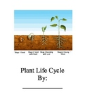 Important Big Book Plant Life Cycle (GLAD strategy)