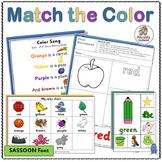 Vocabulary: Color Matching Printable Activities (SASSOON)
