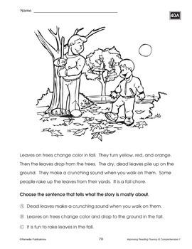 Improving Reading Fluency & Comprehension {Bundle}