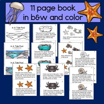 In A Tide Pool Non-fiction Guided Reading Book