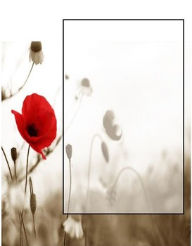 In Flanders Fields:  A Remembrance Day Poetry Assignment