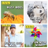 In The News- March  Edition (mail, dog sled races, bees, wind)