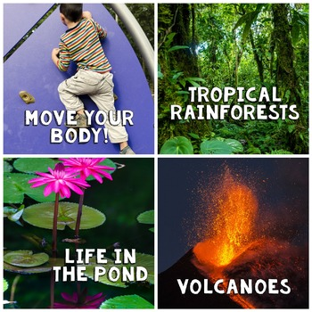In The News- May Edition (rainforests, pond life, healthy body, volcanoes)