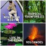 In The News- May Edition (rainforests, pond life, healthy