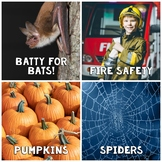 In The News- October Edition (bats, fire safety, spiders,