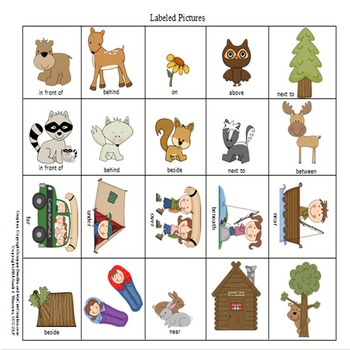 In The Woods Preposition Play!  An Expressive Language Activity