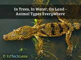 In Trees, In Water, On Land - Animal Types Everywhere PDF