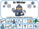 In Winter- Adapted Interactive Book {Autism, Early Childho