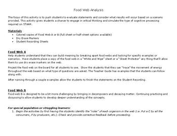 In-depth Food Web Analysis